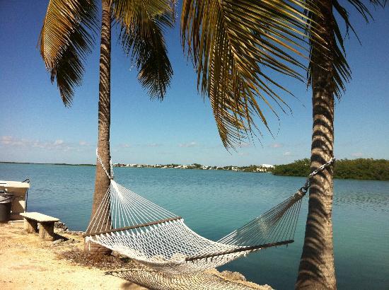 Rock Reef Resort: Read a book in the hammock