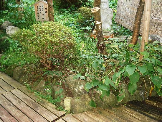 Kinokuniya Jinpachi : 露天風呂から見える庭
