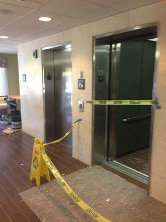 Hampton Inn Orlando/Lake Buena Vista:                   Hallway