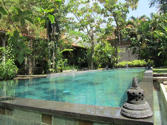 Villa Kampung Kecil : Kampung Kecil - swimming pool