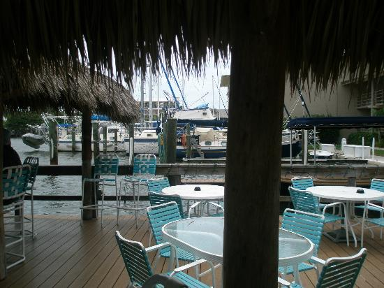 Cove Inn on Naples Bay: The bar