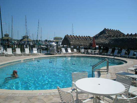 Cove Inn on Naples Bay: The pool - nice :)