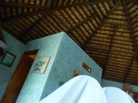 Cabo Pulmo Beach Resort: Eco Bungalow #6