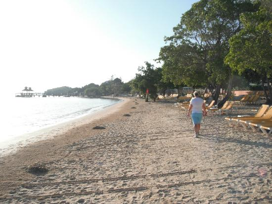 إيبيروستار روز هول بيتش أول إنكلوسيف: Beach 