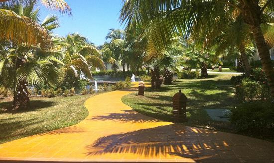 Iberostar Rose Hall Beach Hotel: Hotel grounds...beautiful!!