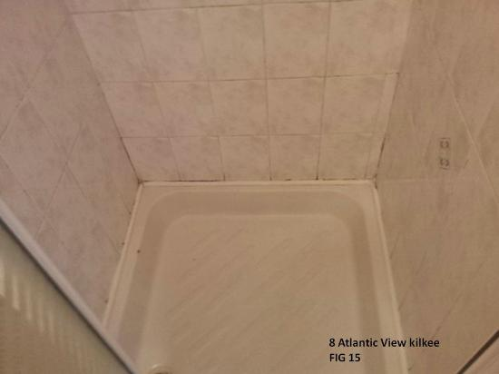Atlantic View Homes: mold on the shower