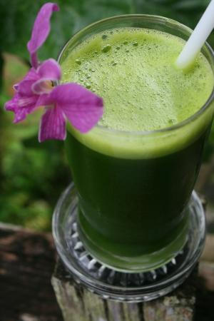 THE SPA KOHCHANG RADIANCE RESTAURANT: green smoothie
