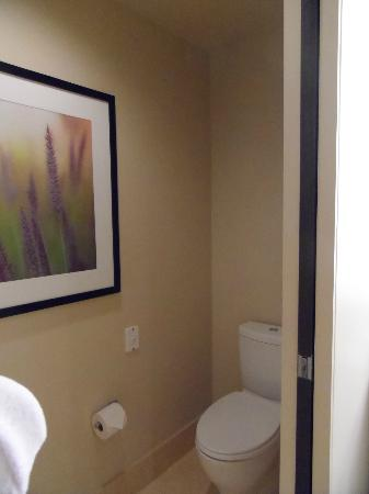 Hyatt At Olive 8: Luxury King Suite - Master Bathroom