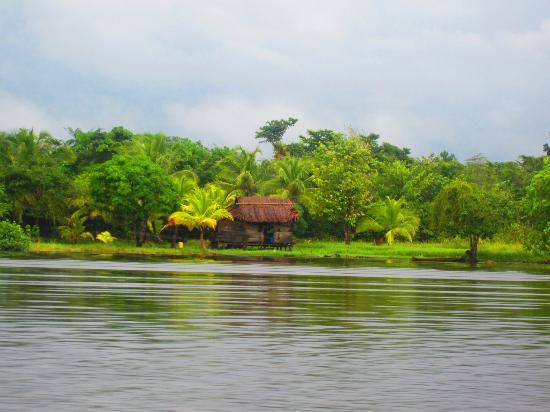 Queen Lobster Bungalows: Ride to Pearl Lagoon via Panga on the Rio Escondido