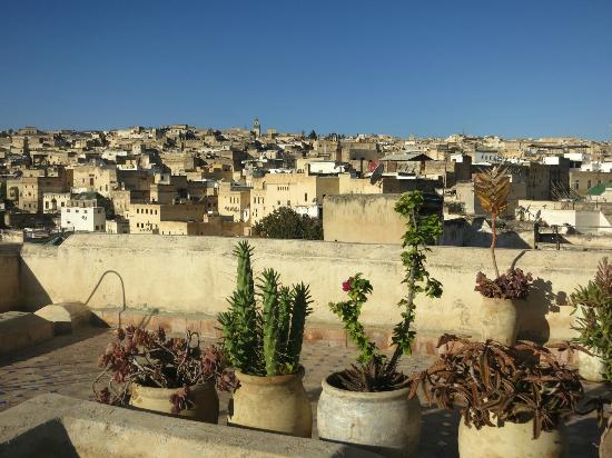 Dar Seffarine: view from rooftop
