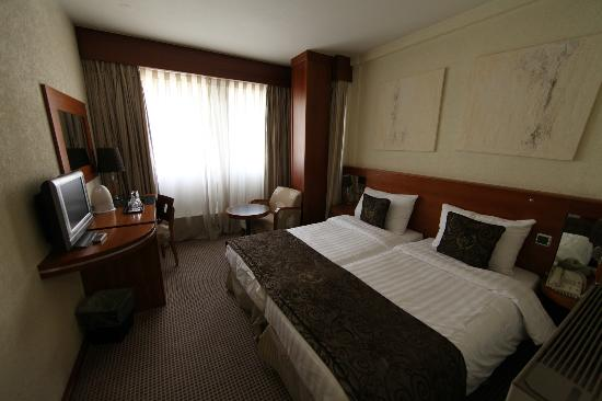 Hotel Nash Ville: Double bed room