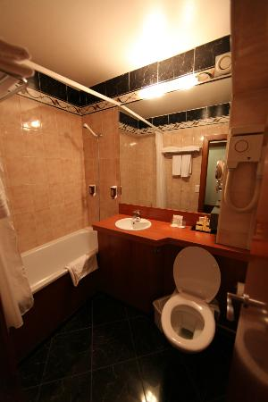 Hotel ibis Geneve Centre Lac: Bathroom