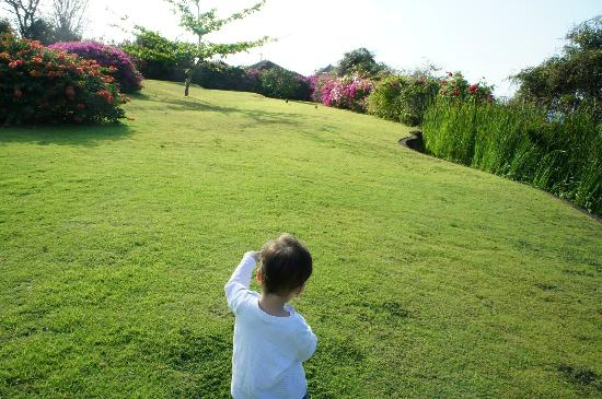 Villa Bidadari Nusa Dua : Garden