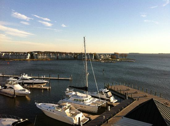 Hilton Garden Inn Kent Island: Beautiful View