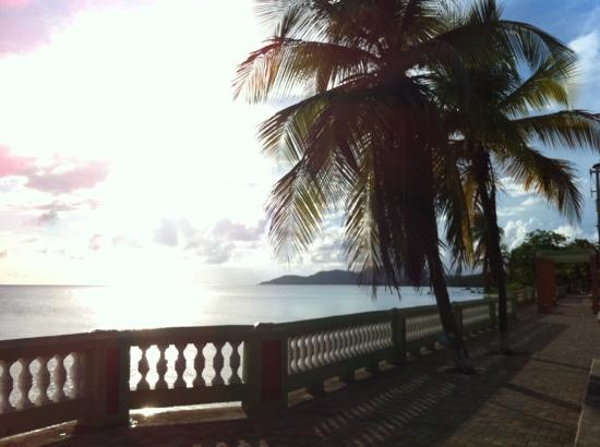 Malecon by Belly Button