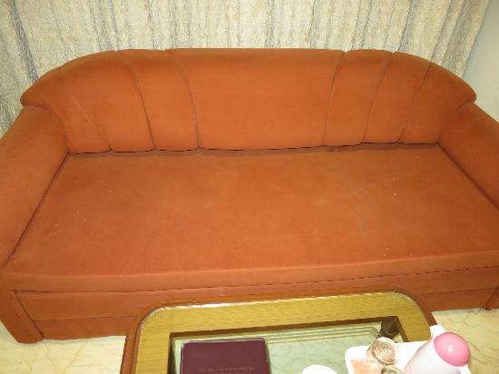 Treebo Garden: Stained couch