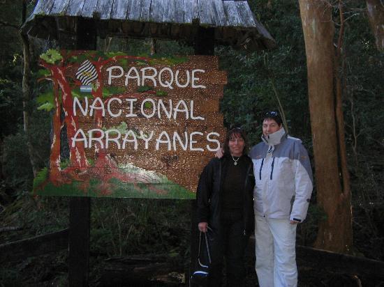 Bosque de Arrayanes: ingreso