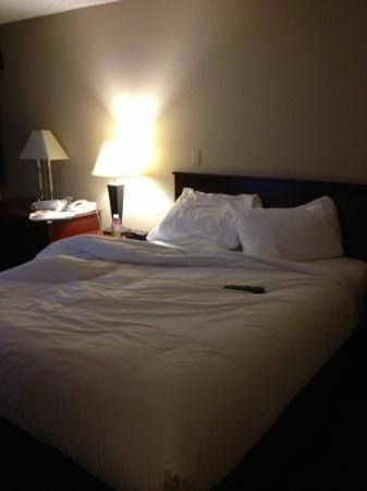 Days Inn Edmonton Airport: comfy bed!