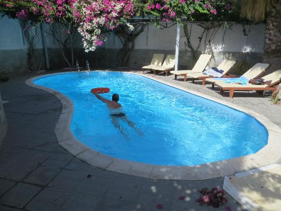 Alesahne Beach Hotel: Back swimming pool