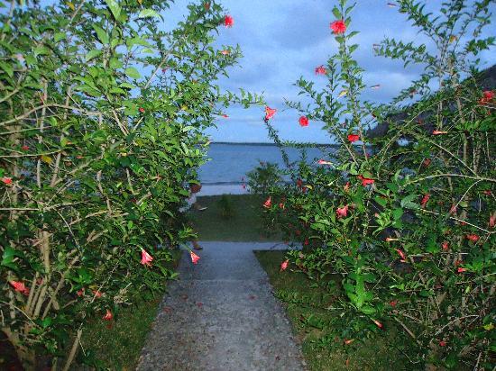 Fantasia Village : vue du bungalow