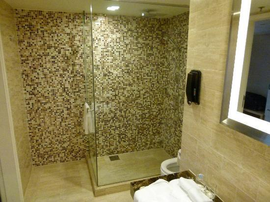 Novotel Singapore Clarke Quay: Premier Exec Room Shower