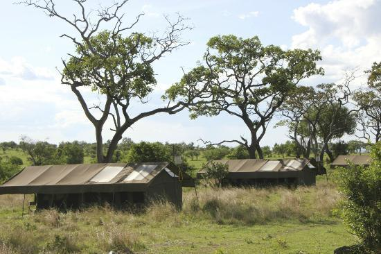 写真Serengeti Safari Camp, Nomad Tanzania枚