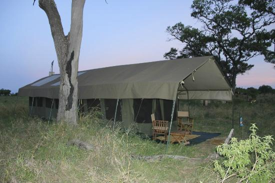 Serengeti Safari Camp, Nomad Tanzania: our tent