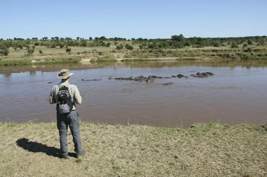 Serengeti Safari Camp, Nomad Tanzania: mara river