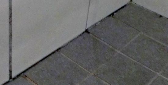 แกรนด์ เมอร์เคียว โอ๊คริดจ์ โฮเต็ล: Shower recess mould