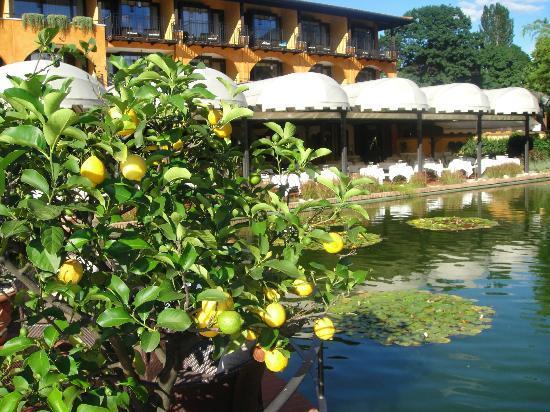Giardino Ascona : Aphrodite restaurant