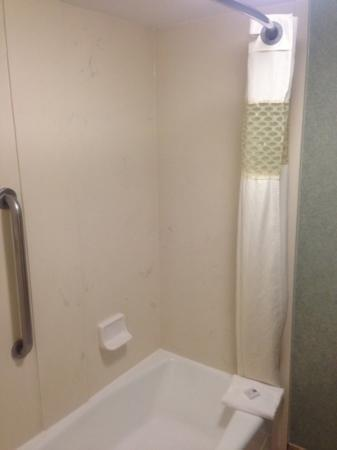 Hampton Inn Duluth: shower 