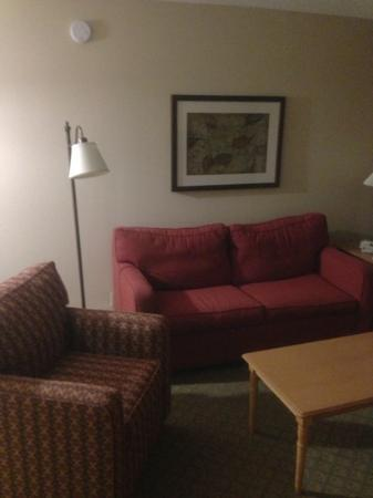Hampton Inn Duluth: living room