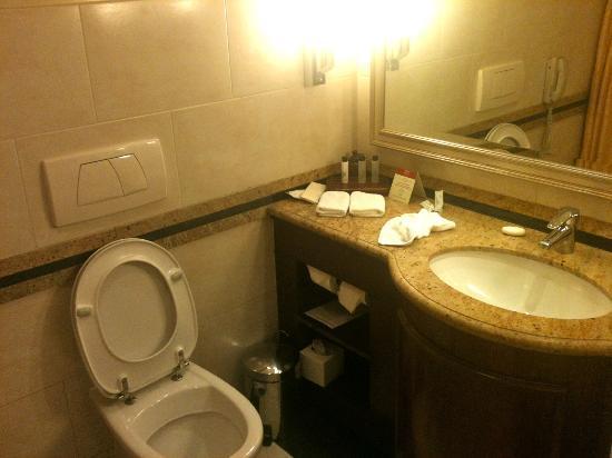 Cairo Marriott Hotel & Omar Khayyam Casino : Bathroom