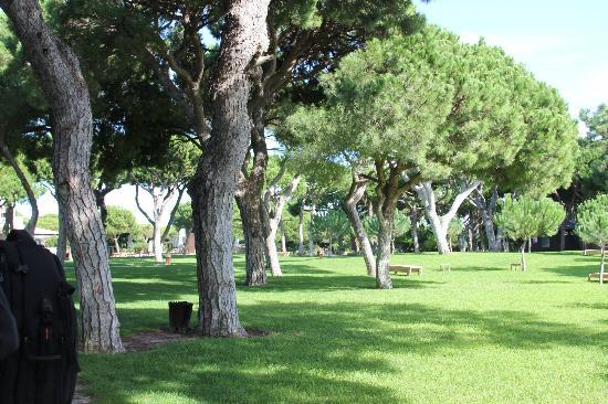 Sheraton Algarve Hotel: Hotel's vast green yards