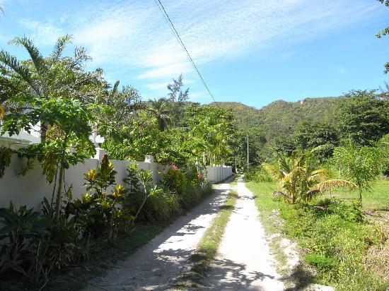 La Modestie Guesthouse: Zufahrtsweg