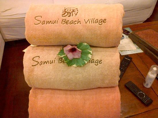 Shiva Samui: Small details...