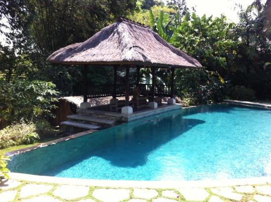 Plataran Canggu Resort & Spa: petite piscine situe en contre-bas de la salle de restauration!!