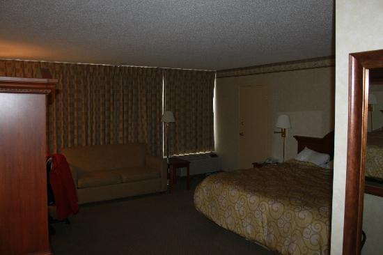 Rodeway Inn and Suites: King size bed and sofa bed