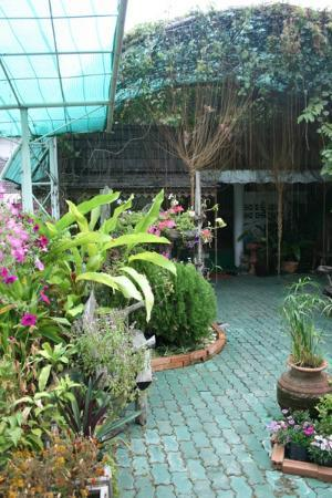 Loi Kroh Traditional Thai Massage and Yoga : school garden