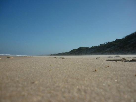 Massinga Beach Lodge: Walking back from the beach bar