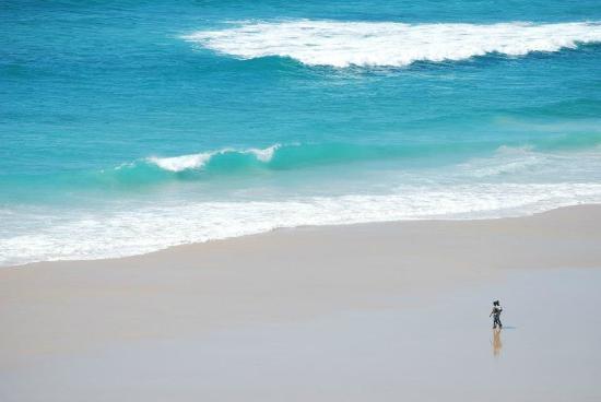 Massinga Beach Lodge: View from the room
