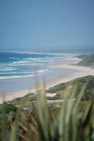 Massinga Beach Lodge: View from the chalet deck
