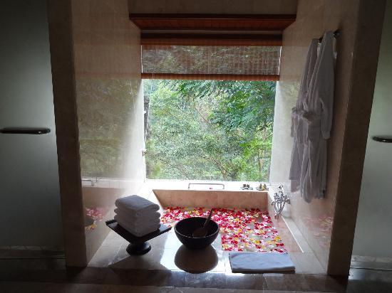 Puri Wulandari Boutique Resort: bathroom bath tub