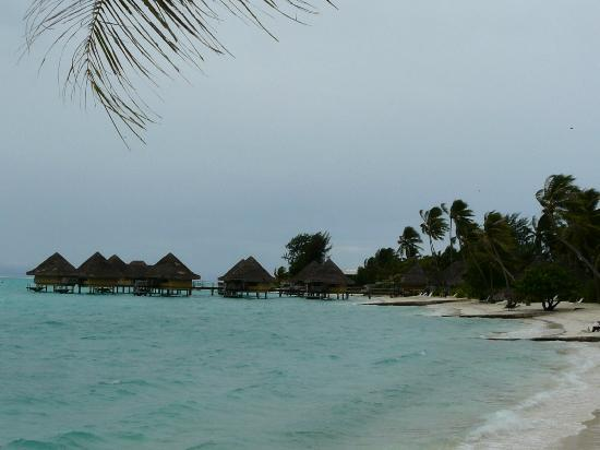 Sofitel Bora Bora Marara Beach Resort: The hotel territory