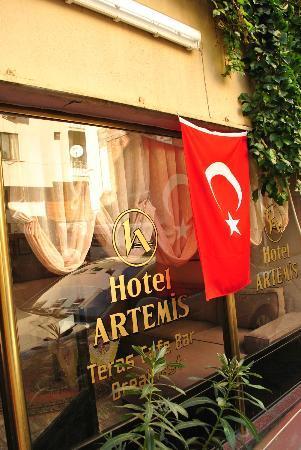 Artemis Hotel: Hotel Artemis