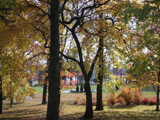 Le Parc du Bois-de-Coulonge : La moitié du parc est boisé