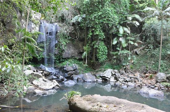 Southern Cross 4WD Tours: Curtis Falls