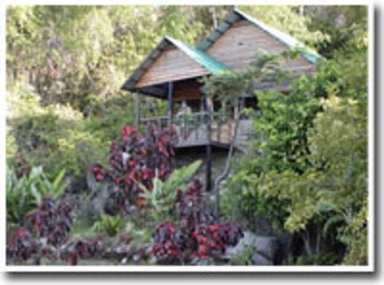 Wag Hill Lodge