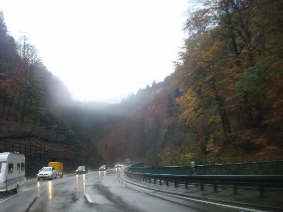 Freiburg im Breisgau, Germany: Black Forest