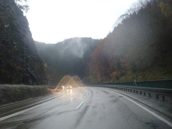 Φράιμπουργκ Ιμ Μπράισγκαου, Γερμανία: Black Forest